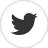 Twitter logo linking to the APGRD's Twitter account